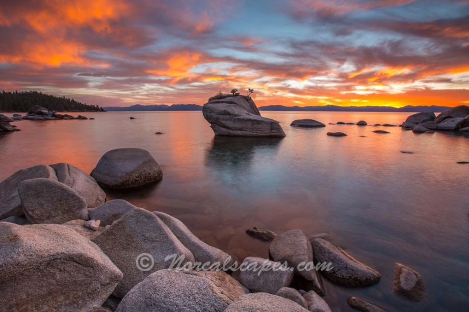 bonsai rock lake tahoe - photo #23